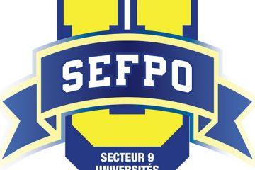 Dernier effort des professeurs de l'Université Algoma membres du SEFPO