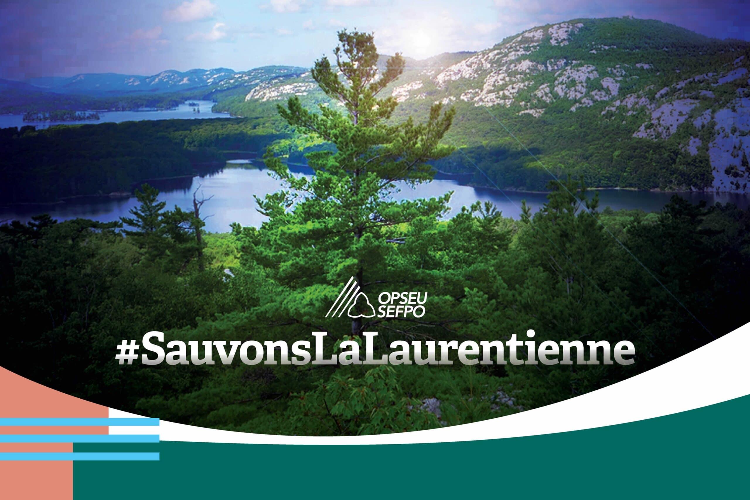Bannière Laurentienne: SauvonsLaLaurentienne